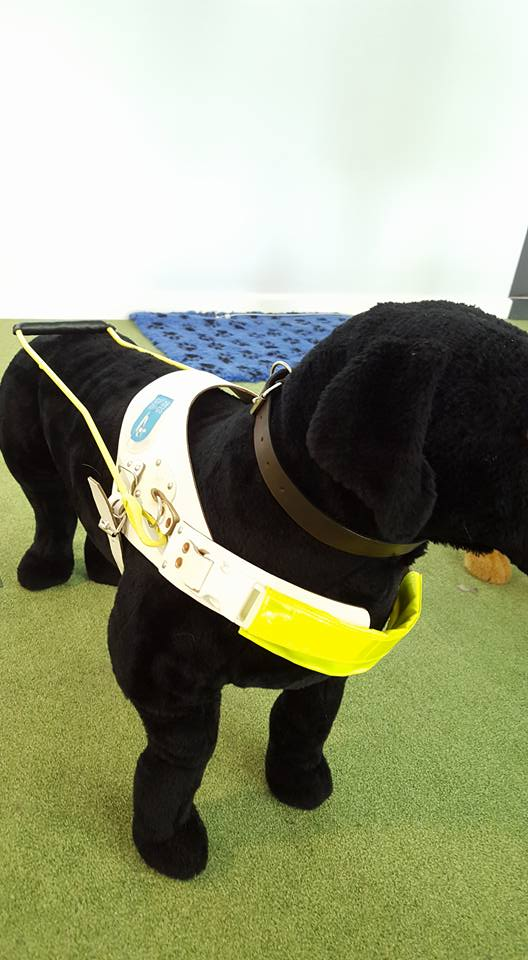 Guide Dogs harness. Photo credit © L Rowe 2015